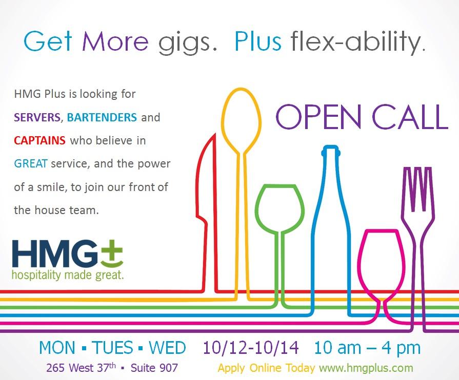 HMG Plus Open Call Oct 2015